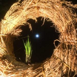稲リース_夜