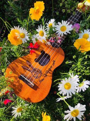 「PokePua」 ウクレレの音色に惹かれて集まった4人。 メンバーのうち3人が障害という名前のつく女の子を育てているママです ポケプアは ハワイの言葉で花束 。花束のような存在でありたい私達です 「ぷらなmy楽舞」 星のかけらであるわたしたちは空と海と大地を感じて 祈りに舞います。 この星と繋がるすべてに 感謝をこめて。 ウクレレの優しい音色と一緒にあまねく光の感謝の舞をお届けします。