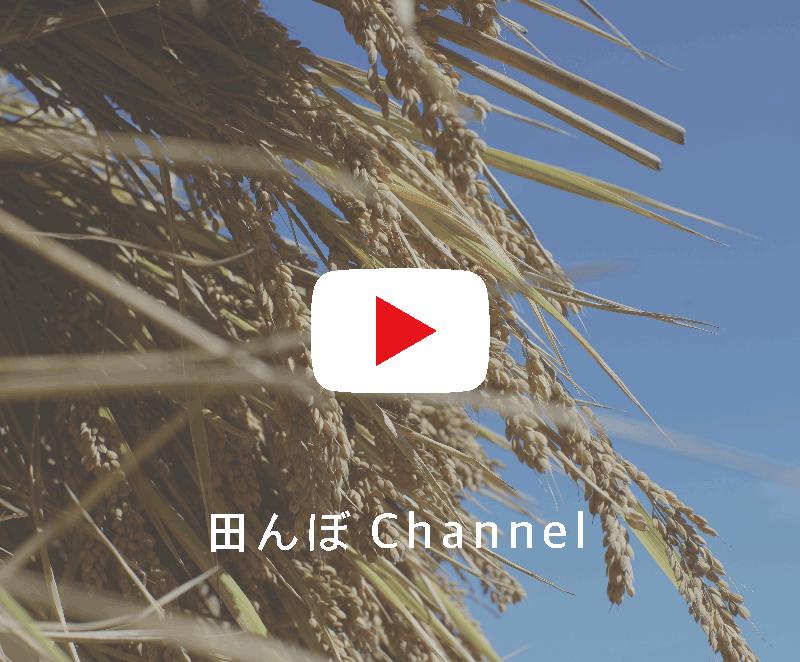 button_channel